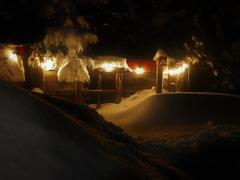 chalet-a-louer_lanaudiere_117988
