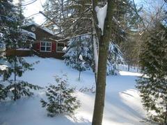 cottage-rental_chalet-rustique_36721