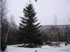 cottage-rental_la-faitiere_3128