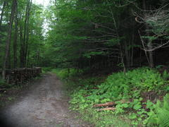 cottage-for-rent_eastern-townships_22019