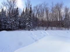 cottage-for-rent_eastern-townships_72843