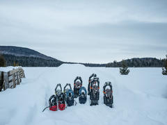 chalet-a-louer_charlevoix_54110