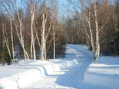 chalet-a-louer_charlevoix_18099