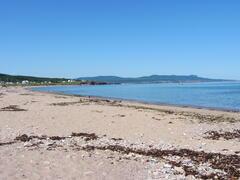 location-chalet_chalets-nature-ocean-sur-mer_37498