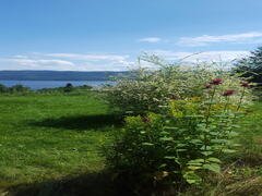 cottage-rental_villa-de-la-montagne-sur-le-fjord_75660