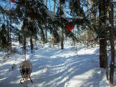 chalet-a-louer_chaudiere-appalaches_30934