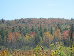 chalet-a-louer_lanaudiere_41087