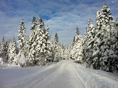 cottage-rental_esker-nature-chaletsvillegiature_50752