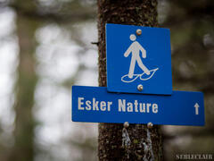 location-chalet_esker-nature-chaletsvillegiature_39470
