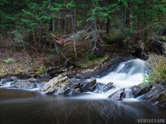 location-chalet_esker-nature-chaletsvillegiature_44483