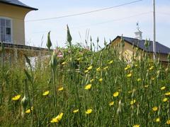 rent-cottage_Rivière-Ouelle_18713