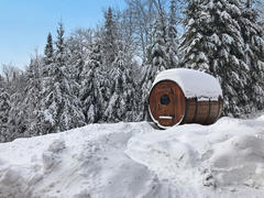 cottage-rental_chalets-spa-nature-blue-moose_99722