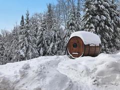 location-chalet_chalets-spa-nature-blue-moose_99722