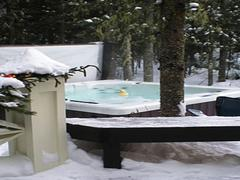 cottage-rental_le-plateau-des-hautes-gorges_37564