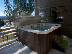 location-chalet_boreal-du-massif_38814