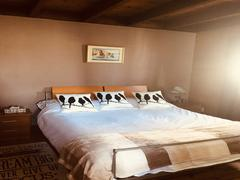 location-chalet_chalet-spa-olga10-personnes_117732