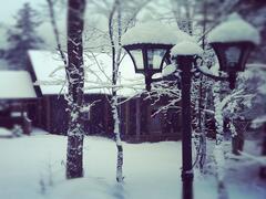 cottage-for-rent_laurentians_43647