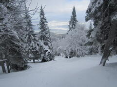 chalet-a-louer_charlevoix_70621