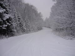 cottage-rental_chalets-charme-nord_44600