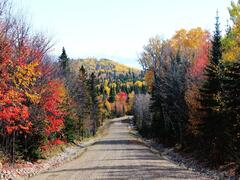 chalet-a-louer_charlevoix_44978