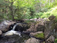 location-chalet_le-ruisseau-reveurspa-et-sauna_48705
