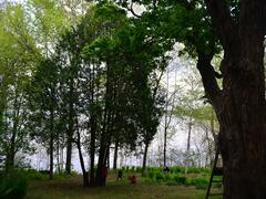 location-chalet_chaumiere-st-gabriel-lac-maskinonge_46879