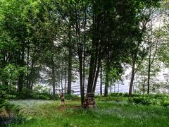 location-chalet_chaumiere-st-gabriel-lac-maskinonge_58253