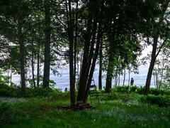 location-chalet_chaumiere-st-gabriel-lac-maskinonge_58255