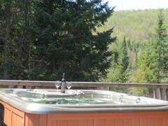 cottage-rental_chalet-bois-rond053_48539