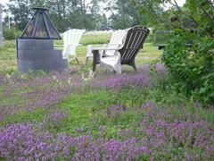 cottage-for-rent_gaspesie_95276