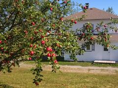 cottage-rental_serge-et-melanie-citq-274820_95281