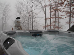 chalet-a-louer_charlevoix_53553