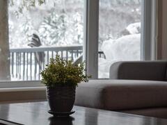 rent-cottage_Magog_100289