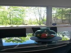 cottage-for-rent_laurentians_76581