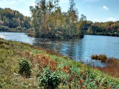 cottage-for-rent_mauricie_60673