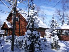 rent-cottage_Mont-Tremblant_60881