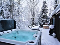 cottage-rental_chalet-spa-le-heron_125268