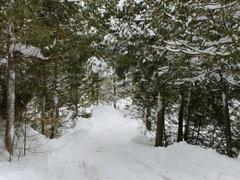 cottage-for-rent_eastern-townships_62688