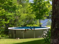 cottage-rental_au-bout-du-lac_100905