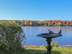 cottage-for-rent_eastern-townships_63156