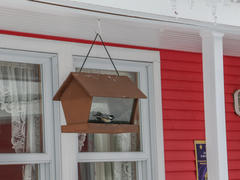 cottage-for-rent_eastern-townships_74881