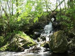 location-chalet_le-cours-du-ruisseau_63502