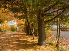 cottage-rental_au-domaine-william-wentworth_102980
