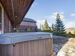 cottage-rental_chalets-spa-nature-lodge-howard_69969