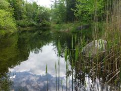 location-chalet_la-riviere-aux-chevreuils_65153
