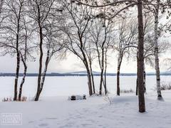 cottage-rental_la-belle-vie-au-lac_117217