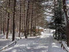 cottage-rental_la-belle-vie-au-lac_117220