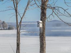 cottage-rental_chalet-l-eau-vive_100799