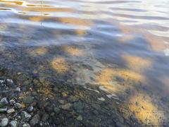 cottage-rental_chalet-l-eau-vive_96223