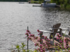 cottage-for-rent_eastern-townships_108784